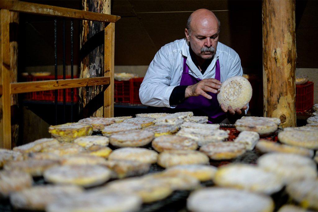 Янов сыр в Риге